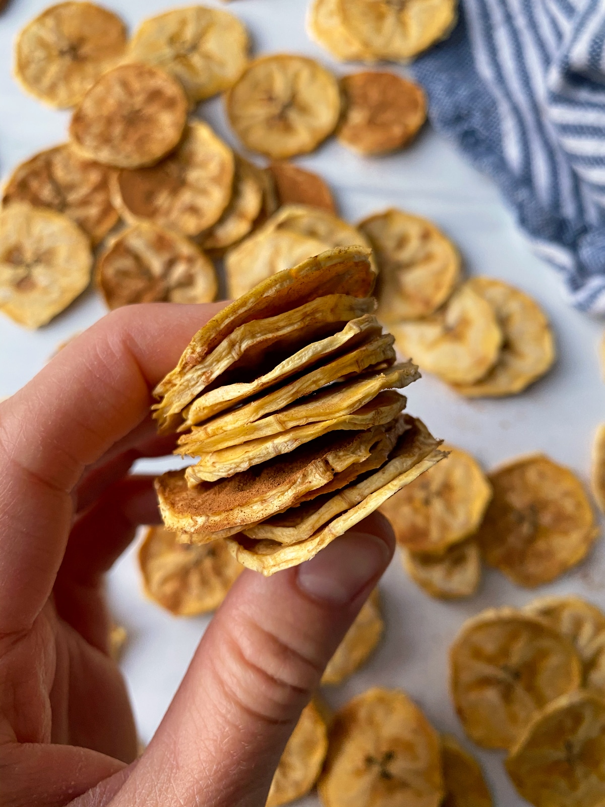 Easy-Vegan-Plantain-Chips