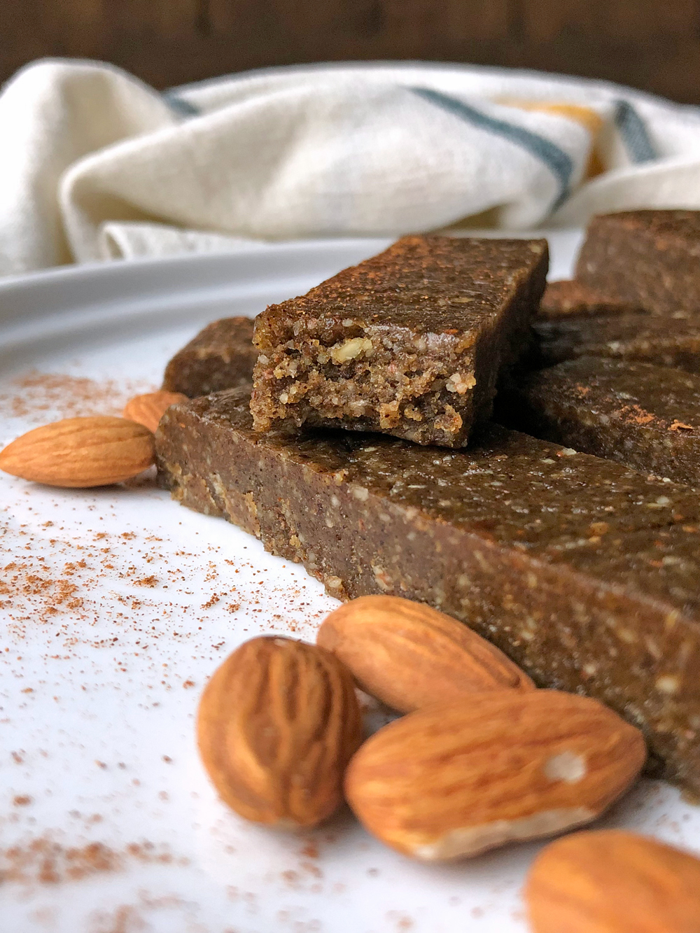 No-Bake-Paleo-Protein-Bars