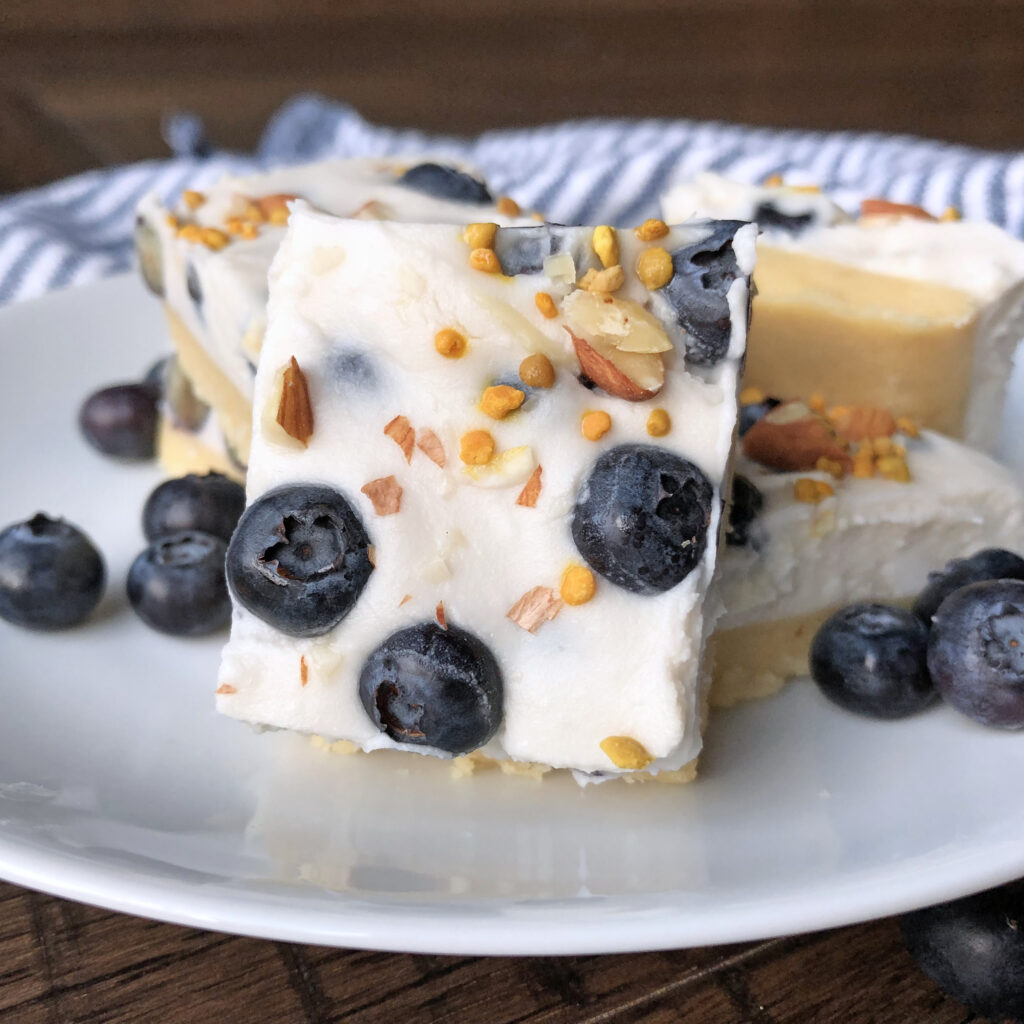 Keto No Bake Blueberry Cheesecake Bars