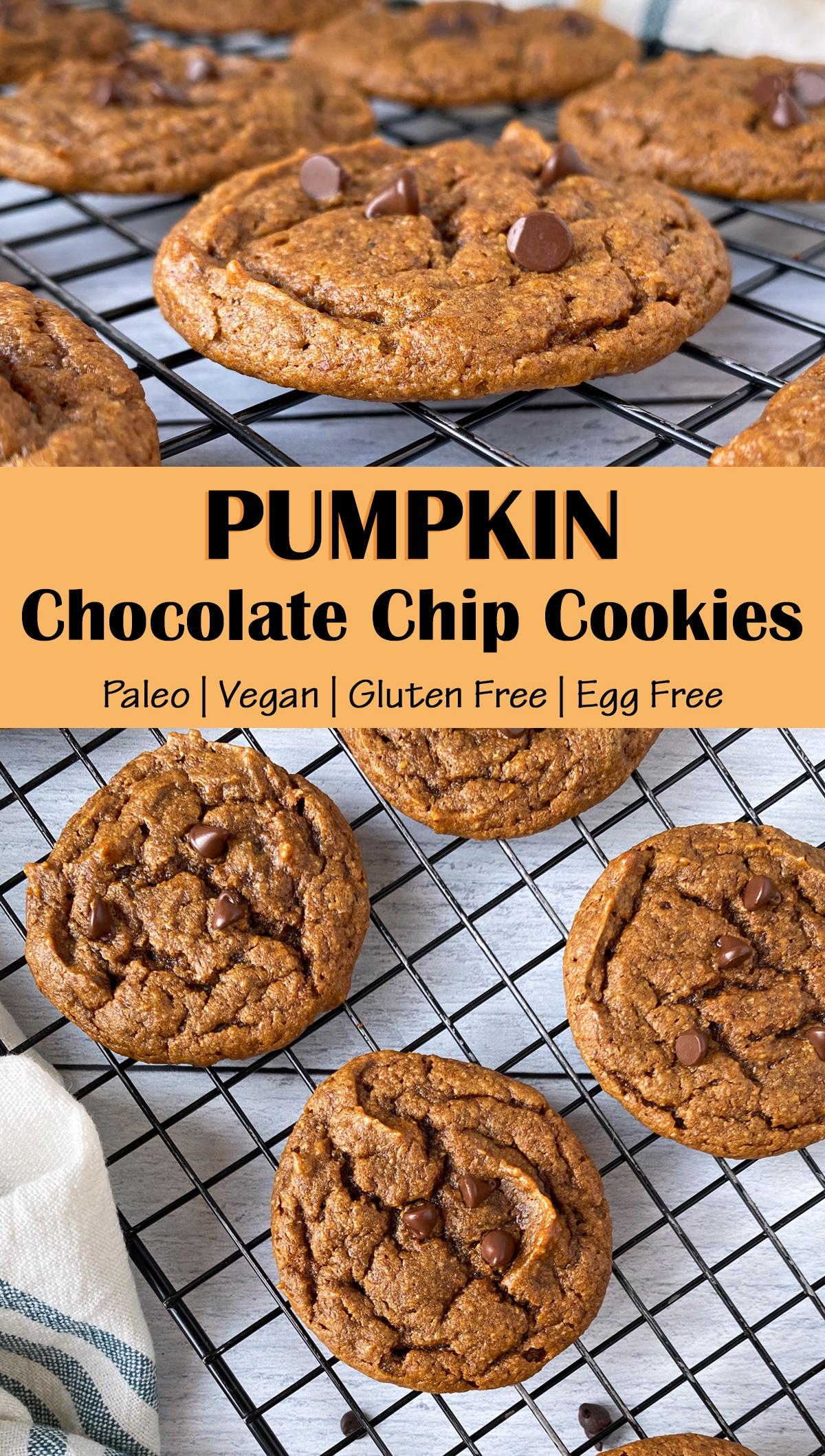 Pumpkin-Chocolate-Chip-Cookie-Recipe