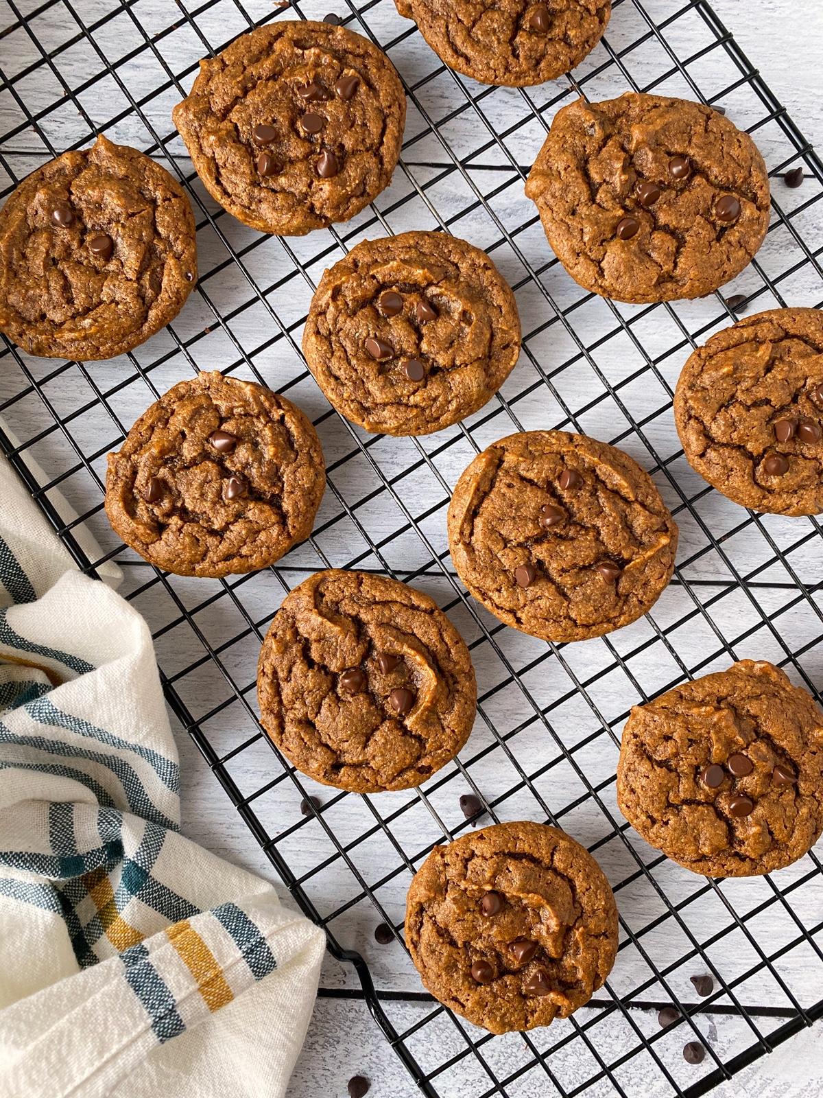 gooey-chewy-pumpkin-chocolate-chip-cookies