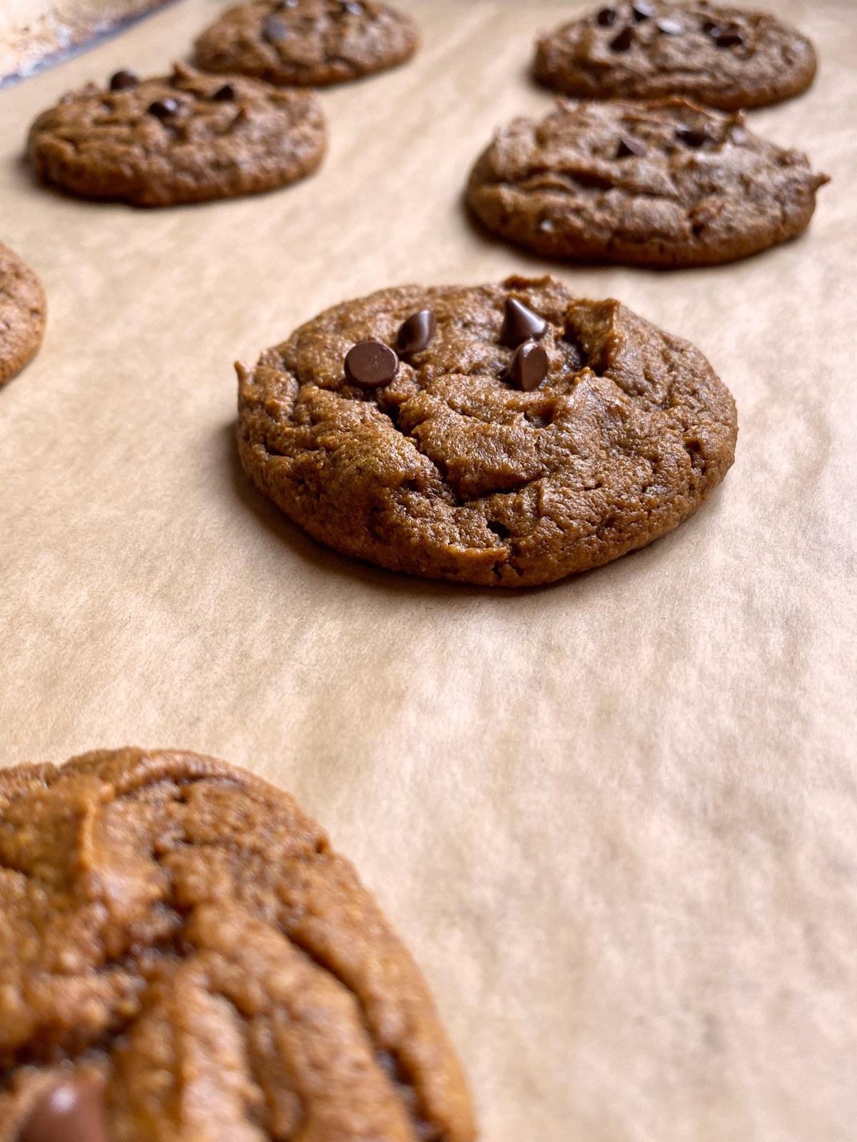 soft-Paleo-pumpkin-cookies