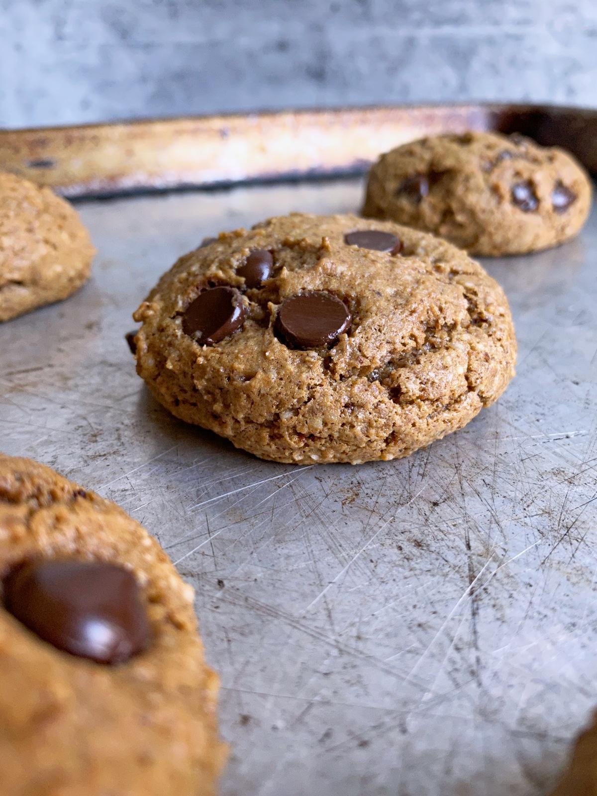 freshly baked gluten free hazelnut cookies