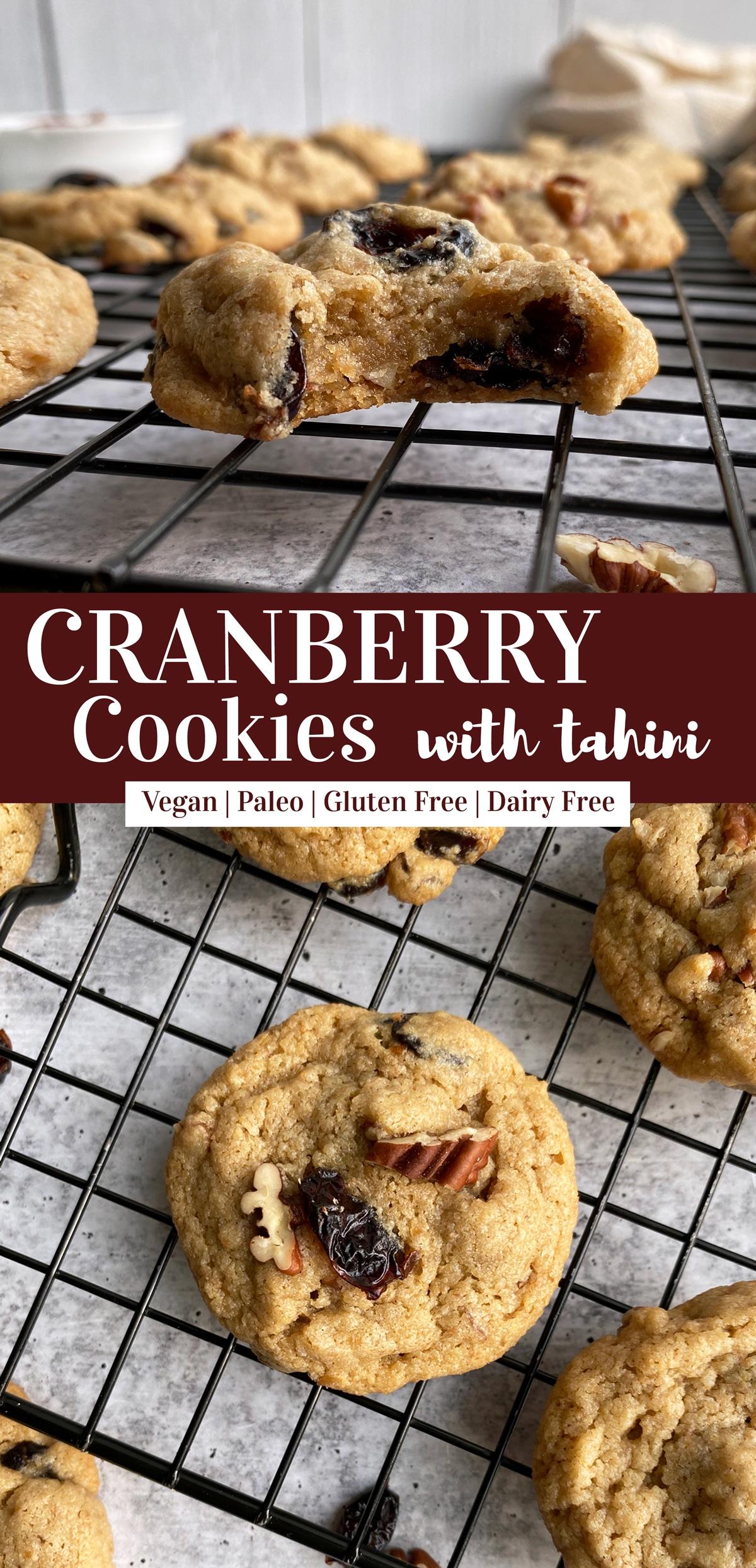 Paleo-Vegan-Cranberry-Cookies-with-Tahini