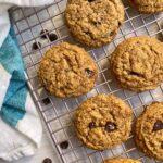 vanilla-protein-powder-chocolate-chip-cookies