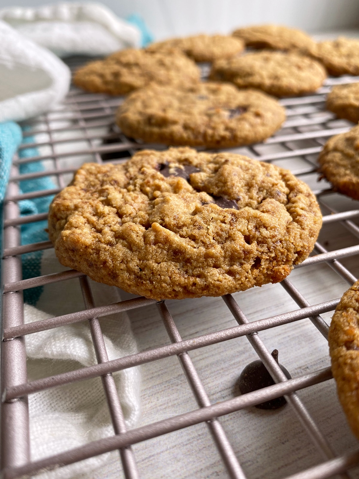 vanilla-protein-powder-cookies-side-view
