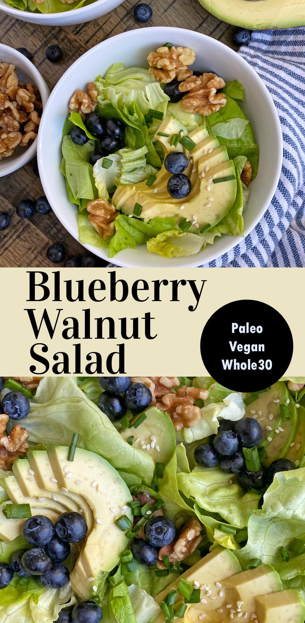 healthy-blueberry-walnut-salad-recipe