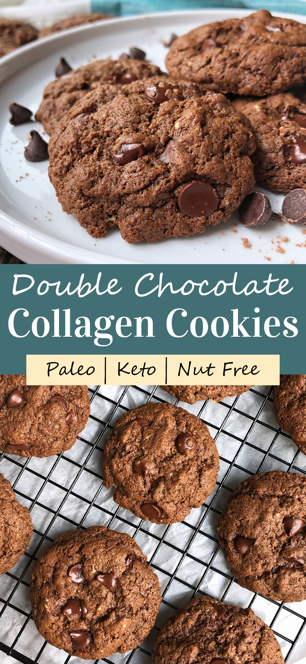 double-chocolate-paleo-cookies-with-collagen-pinterest-image