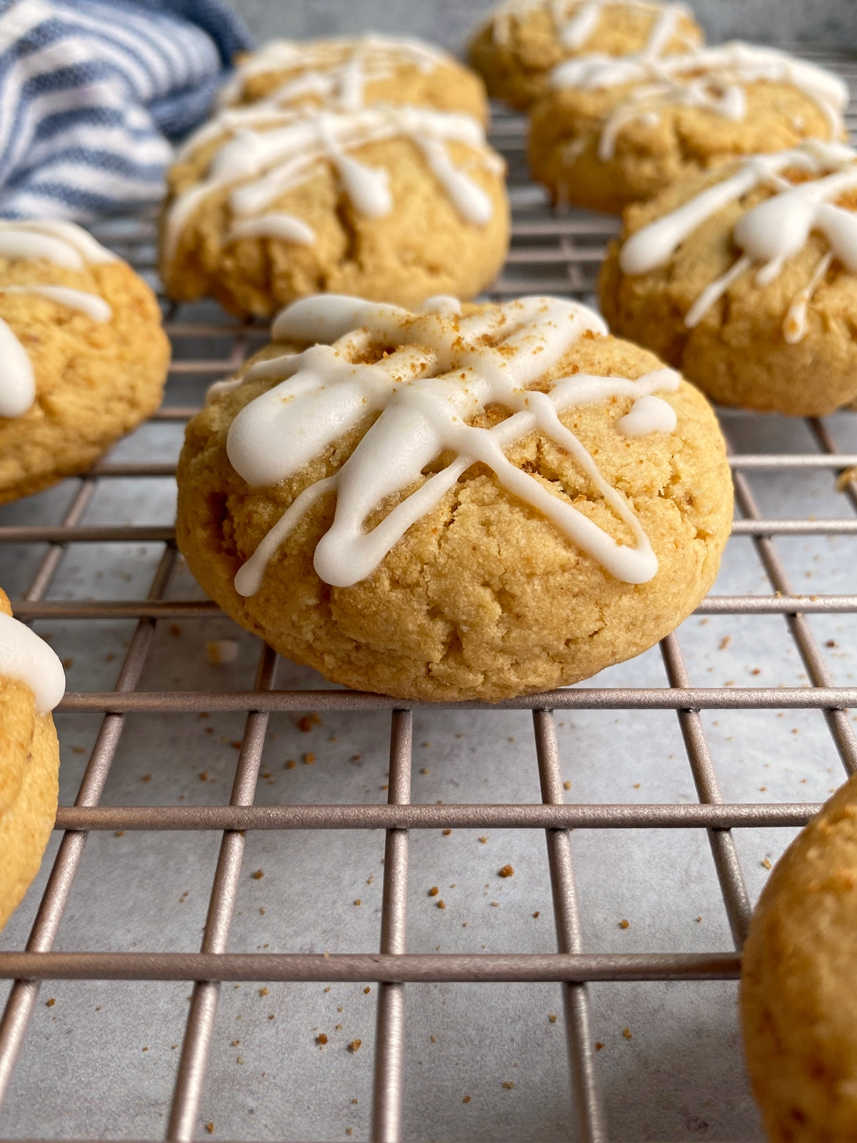 paleo-vegan-cookie-recipe
